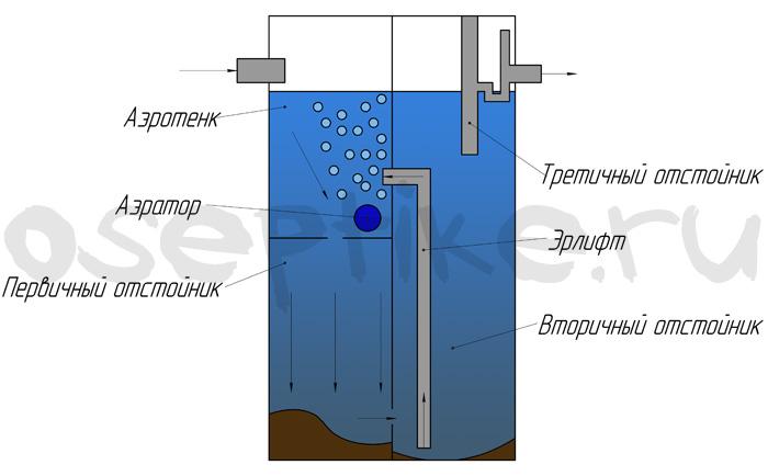 Септик евробион